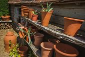 Northiam, Great Britain - July 13 , 2017- Ceramic Flower Pots On A Wooden Shelf In Great Gardens Of  poster