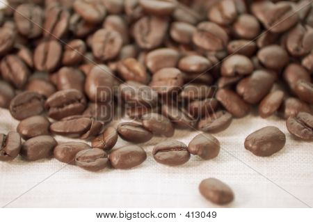 Coffee Beans On Burlap Cloth