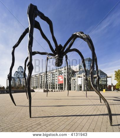 Spider Sculpture Maman
