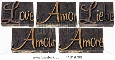 love word in 5 languages (English, Spanish, German, French and Italian) - a collage of isolated text in vintage letterpress wood type printing blocks, script font