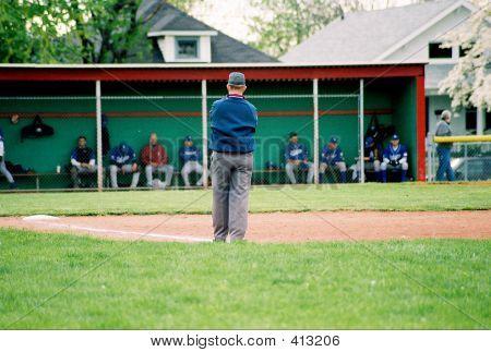 Hometown Baseball