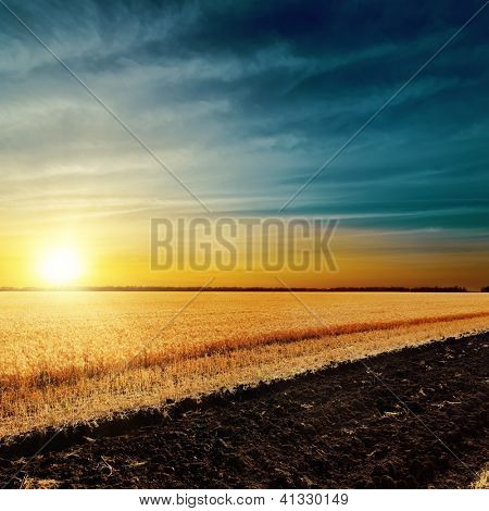 sunset over harvest field