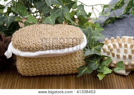Netsponge with Massagebrush