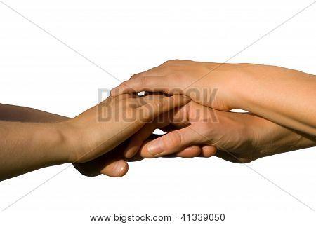 Some Hands Symbolizing Teamwork