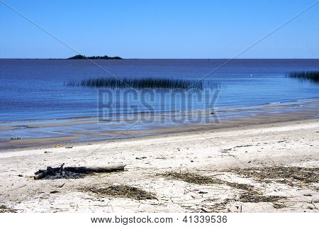 Beach And Wood Uruguay