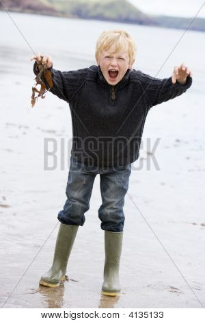 Young Boy Standing On Beach Holding Leaves Smiling