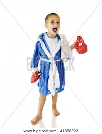 A vicious-looking preschooler holding his boxing gloves as he looks at the viewer in his robe.  On a white background.