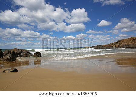 Cressy Beach. Tasmania