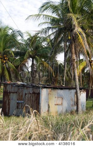 Typical House Corn Island Nicaragua