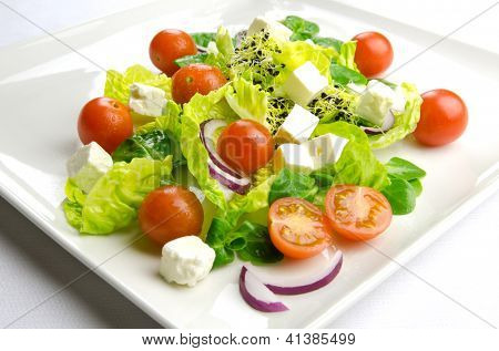 Diet time, fresh salad for a healthy lifestyle