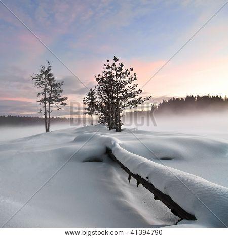 Wintry Landscape IV