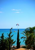 picture of parasailing  - A summer sport  - JPG