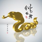 picture of chinese new year 2013  - Golden Snake - JPG
