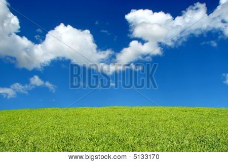 Field And Sky Landscape