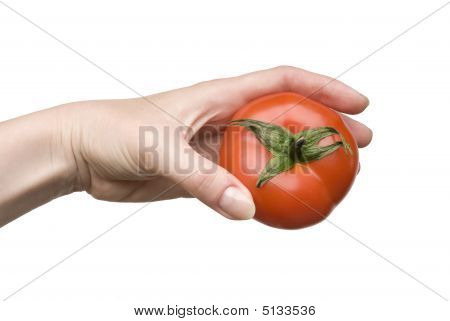 Ripe Tomato In A Female Hand