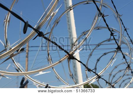 Sharp razor wire tangled with barbwire on a secure fence.