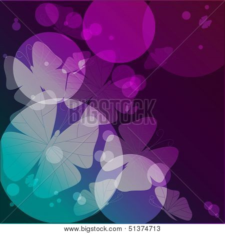 butterflies and circles of different size on a varicoloured background