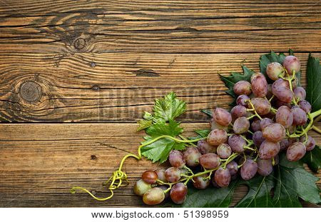 Grapes On Old Wood