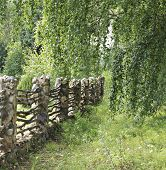 image of old stone fence  - The old fence is made of a stone and a tree.