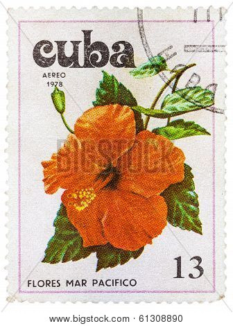 Postage Stamp Shows Flowers Of The Pacific Ocean