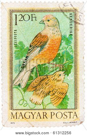 Stamp Printed In Hungary, Shows Linnets, Without Inscription, From The Series
