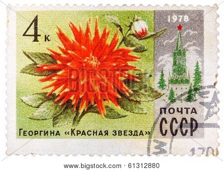 Stamp Printed In Russia Shows Dahlia Red Star And Spasski Tower