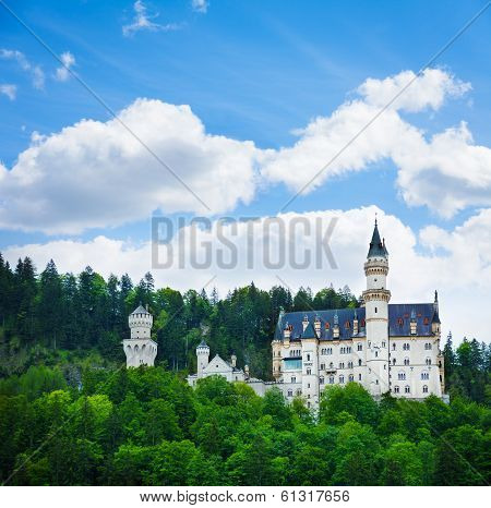 Neuschwanstein Castle View