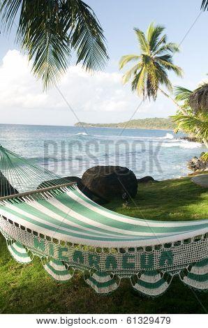 Hammock In Sun Resort Big Corn Island Nicaragua Caribbean Sea