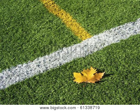 Soccer Field's Lines In Autumn