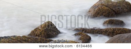Tidal swell