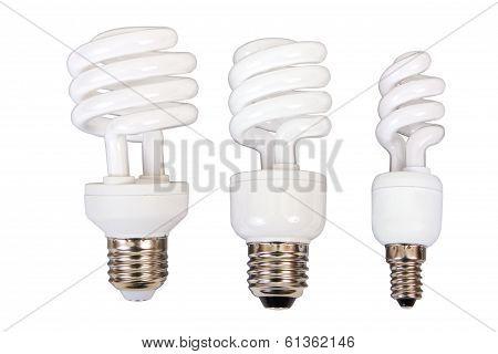 Three Fluorescent Light Bulb