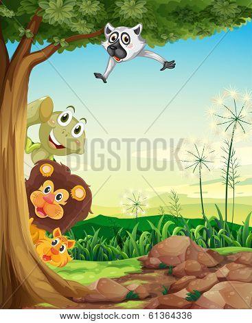 Illustration of the animals hiding