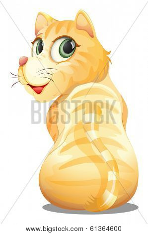 Illustration of a backview of an orange cat on a white background