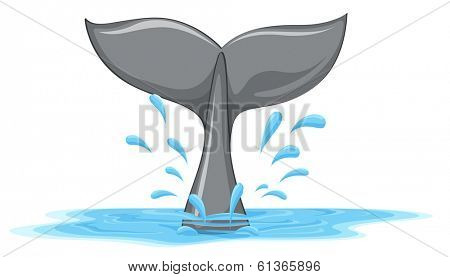 Illustration of a tail of a whale on a white background
