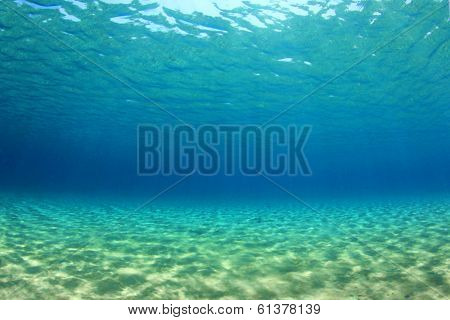 Underwater background in Ocean