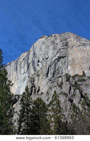 El Capitan Mountain Yosemite National Park