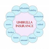 Umbrella Insurance Circular Word Concept