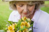 Close-up of a mature woman smelling flowers at the park
