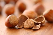 Close up of hazelnuts, selective focus