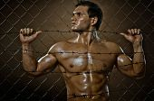 foto of felons  - the very muscular handsome felon guy out of netting steel fence - JPG
