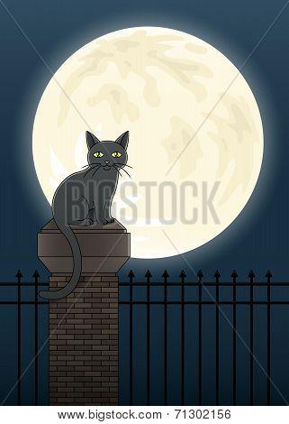 Halloween Cat Scene