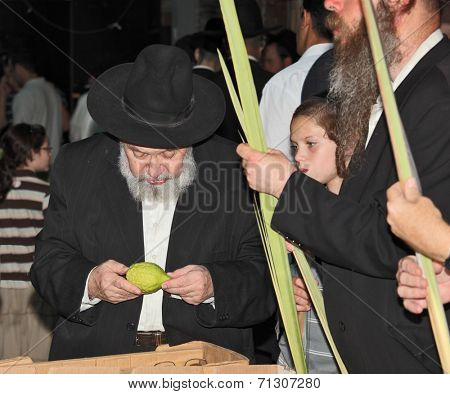 BENE - BERAK, ISRAEL - SEPTEMBER 17, 2013:  The elderly man with gray-haired beard chooses a citrus.  Big market on the eve of the Jewish holiday of Sukkot