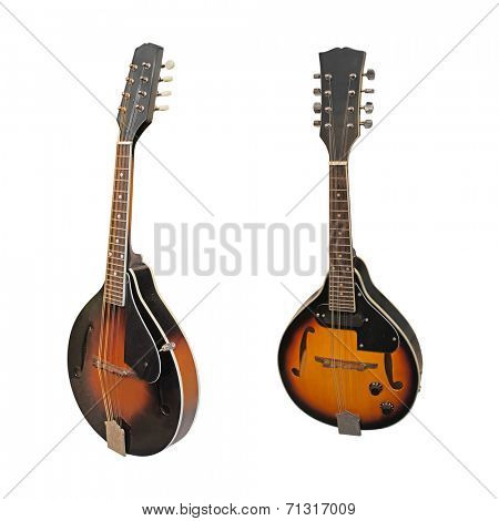 mandolin isolated under the white background