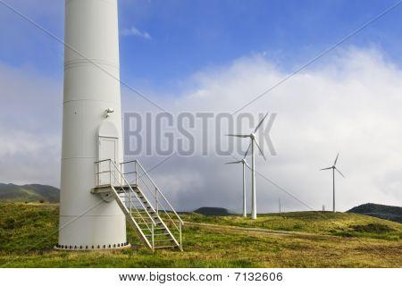 Wind Tower Door