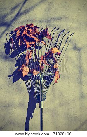 Autumn broom with leaves