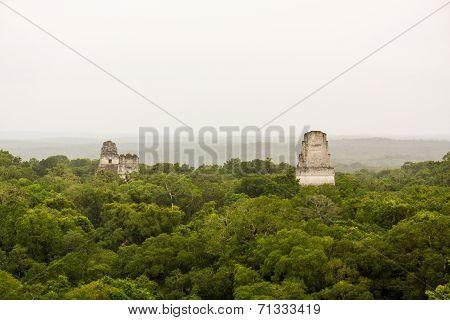 Mayan Piramides In Jungle Or Selva In Tikal Peten Guatemala