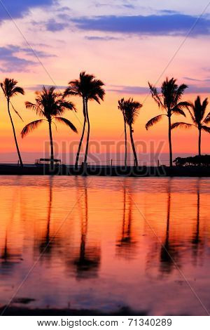 Paradise beach sunset with tropical palm trees. Summer travel holidays vacation getaway colorful concept photo from sea ocean water at Big Island, Hawaii, USA.