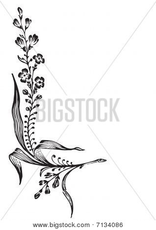 antique flower corner engraving (vector)
