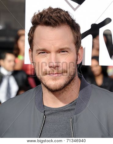 LOS ANGELES - APR 13:  Chris Pratt arrives to the 2014 MTV Movie Awards  on April 13, 2014 in Los Angeles, CA.