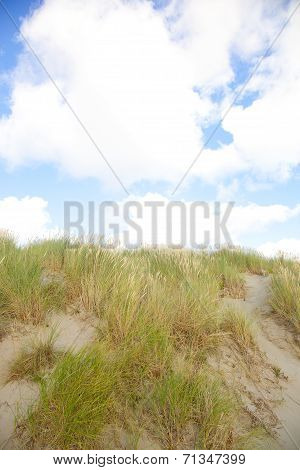 Dunes With Sand And Cloudy Blue Sky